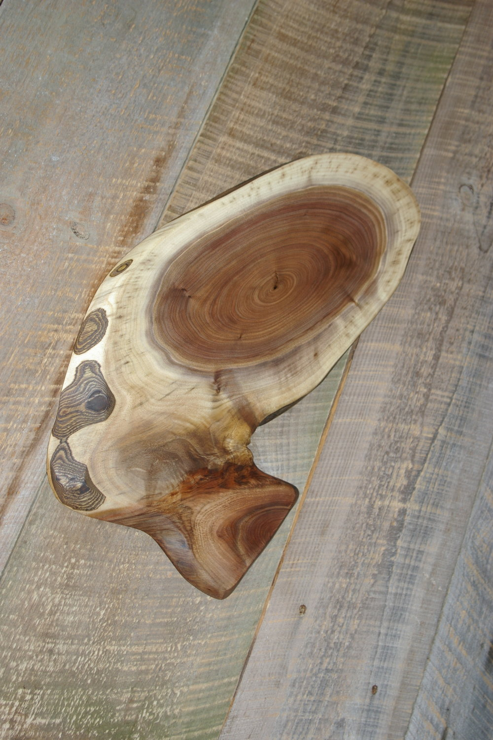 Black Walnut Slice $60 - #127 Black walnut serving or display slicesize 12x21x 3/4