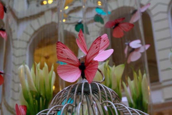 atrium-boscolo-hotel-budapest-butterfly