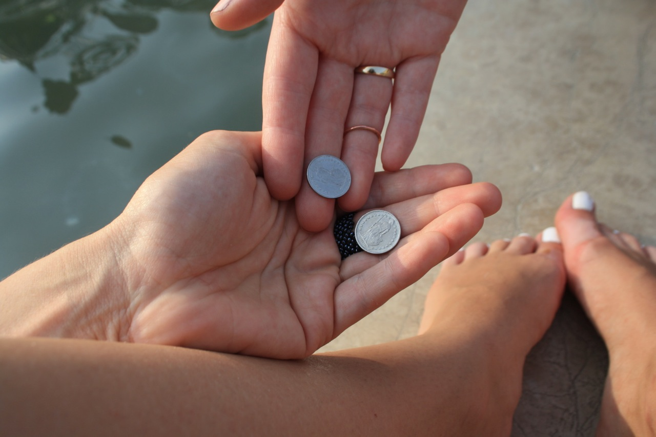 money-tips-for-travel-coins