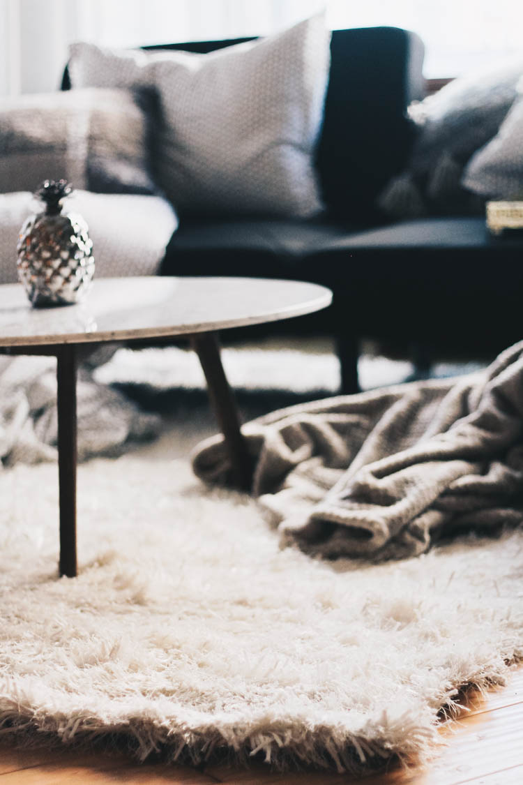 Cozy shag rug from HomeSense