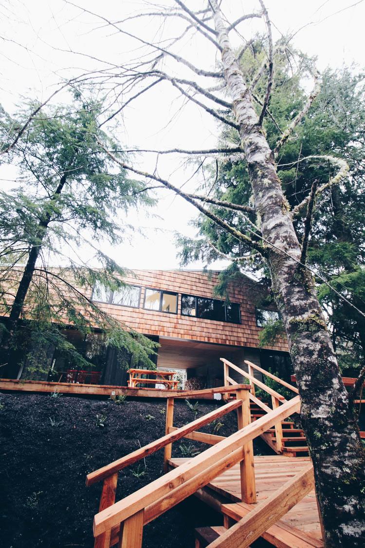 Chesterman Cabin Stay Tofino