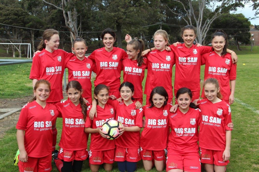 More girls wanted - Expansion of girls and women's football