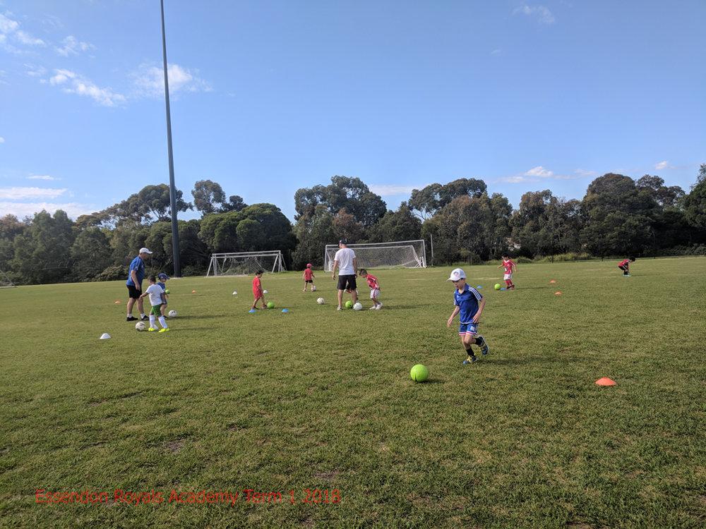 Come Play. - Essendon Royals Academy