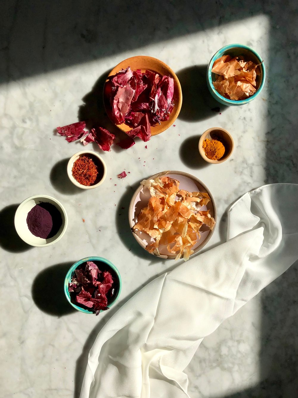 FOOD WASTE DYEING CLASS - WITH MAGGIE PATE!!
