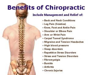01bbdfa67c01fb8818775d63265902a1--chiropractic-wellness-knowledge-is-power.jpg