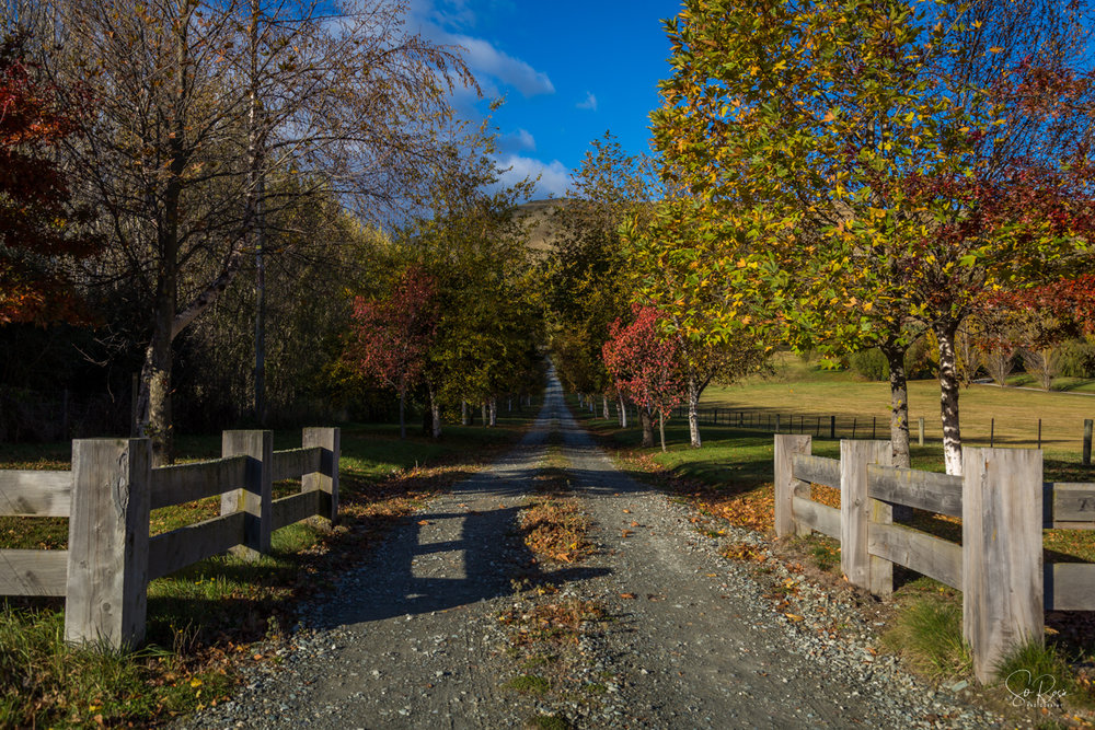 Day 6 - Queenstown-0205-Edit.jpg