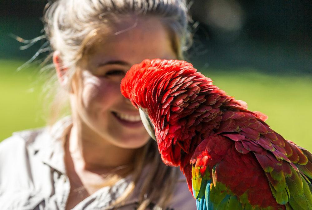Australia Zoo-0290.jpg