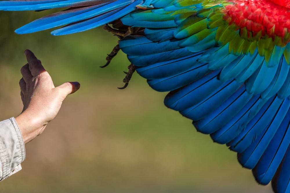 Australia Zoo-0330.jpg
