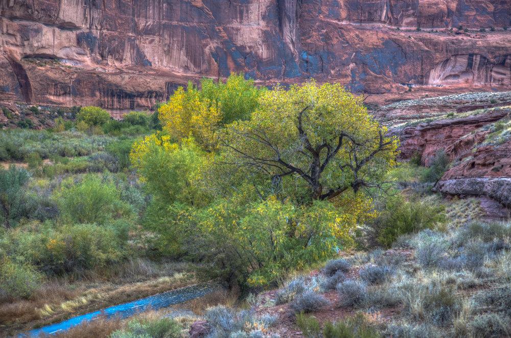 Moab to Denver0322HDR.jpg