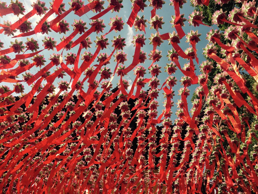 hangzhou hanging lotus at the temple in 2017 on a summer day