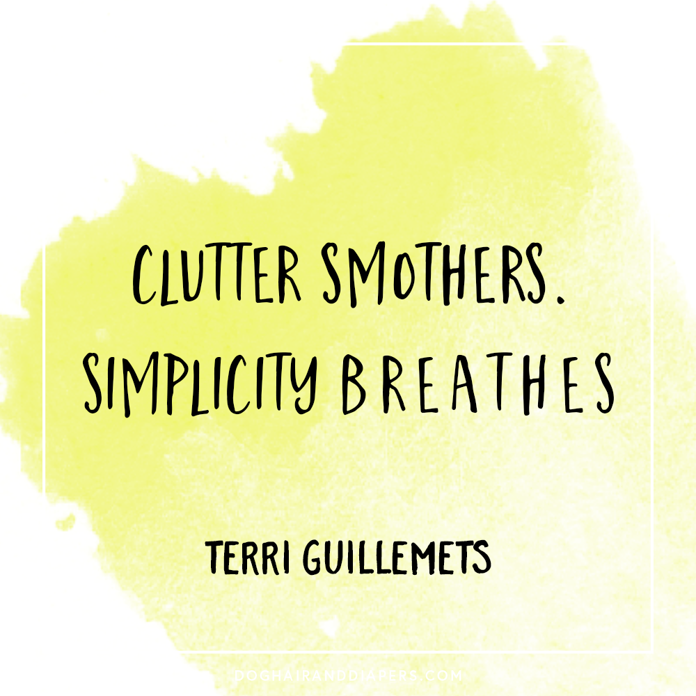 Terri Guillemets Clutter.png