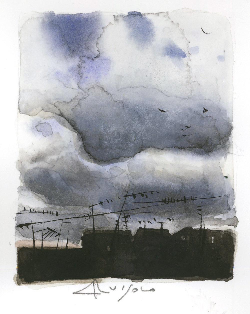 cielino, capricci, 2010