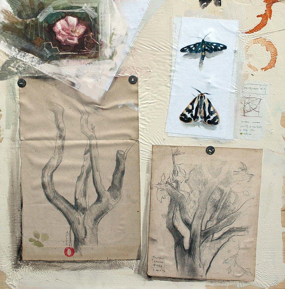 varia natura, 2009