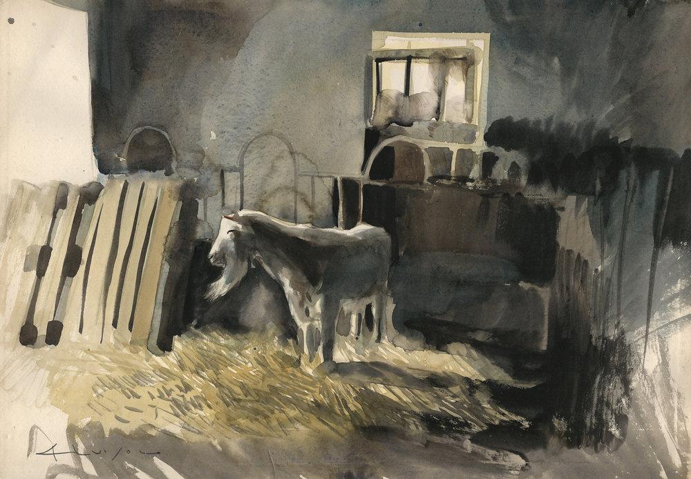 è un capra, 2015