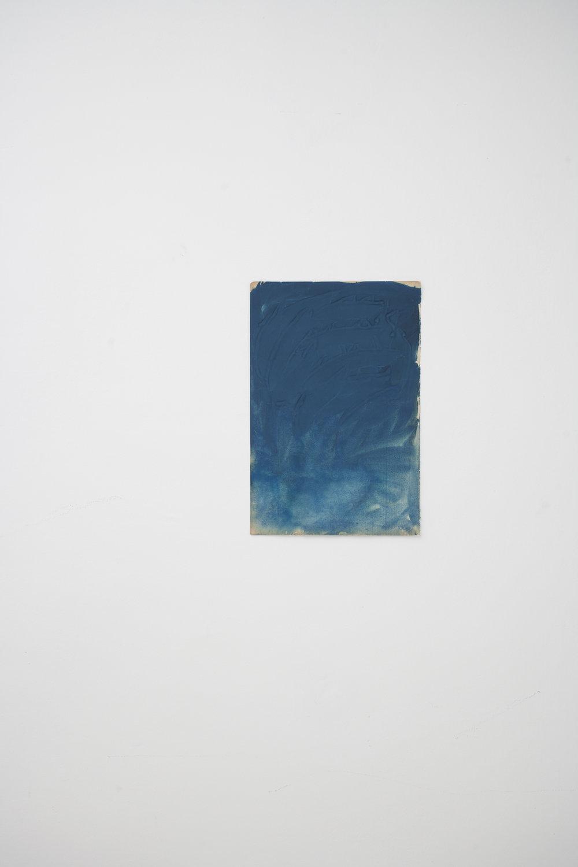 blu, 2017