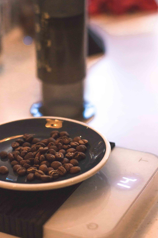 - Le Kieni de Coffee Collective est cultivé à 1800m dans la région de Nyeri au centre du Kenya. Ce café nous impressionne par sa complexité aromatique, entre le fruit et le floral accentué par une note d'acidité et un corps très développé. La qualité exceptionnelle de leur travail permet aux producteurs de vendre leur production au dessus du cours du marché et ainsi assurer une qualité optimale.Le Guji de Prolog nous provient également de l'Afrique centrale, plus précisément du Ethiopie dans la région de Shakiso. Nous retrouvons des notes prononcées de papaye puis de framboise et d'orange. Son processus de séchage naturel apporte une note fermentée caractéristique.