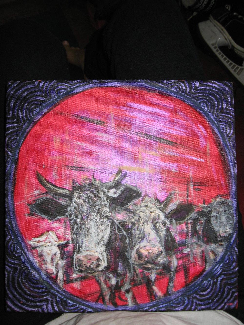 pink cows.jpg