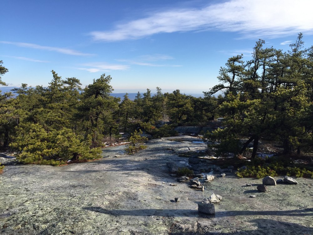 MinnewaskaState Park - Beautiful morning for a hike!These trees are growing on solid granite.