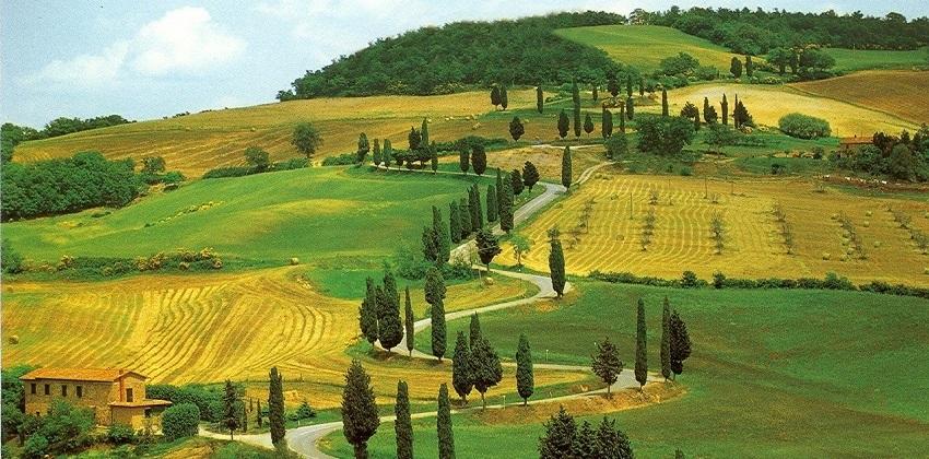 Tuscan-vintage-cars-1.jpg