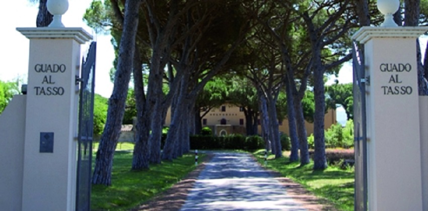 Supertuscans-wine-experience-Italys-Finest-05.jpg