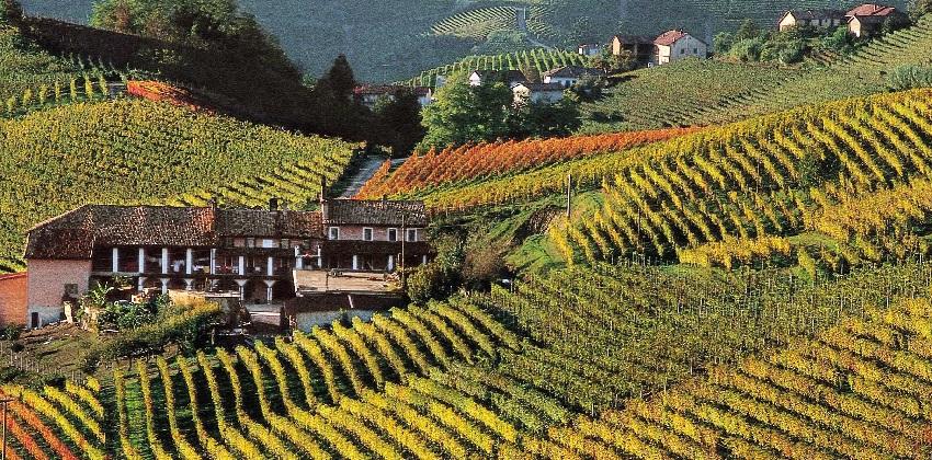 Barolo-and-white-truffle-hunt-Italys-Finest-2.jpg