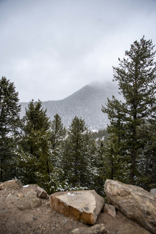 Boulder-013.JPG