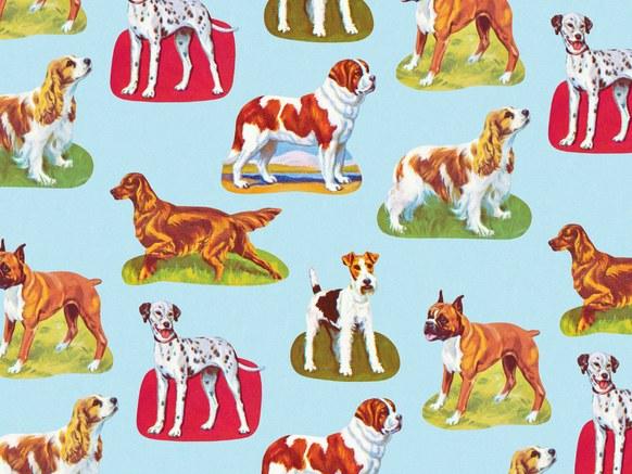 0410-IG-dogs.jpg