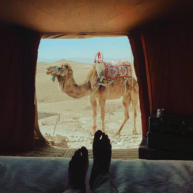 Wake up in the Desert 🐫 #visitmorocco #AmarèTravel #liveforadventure #Travel #Fashion #Beauty #goseetheworld #AmaréMagazine