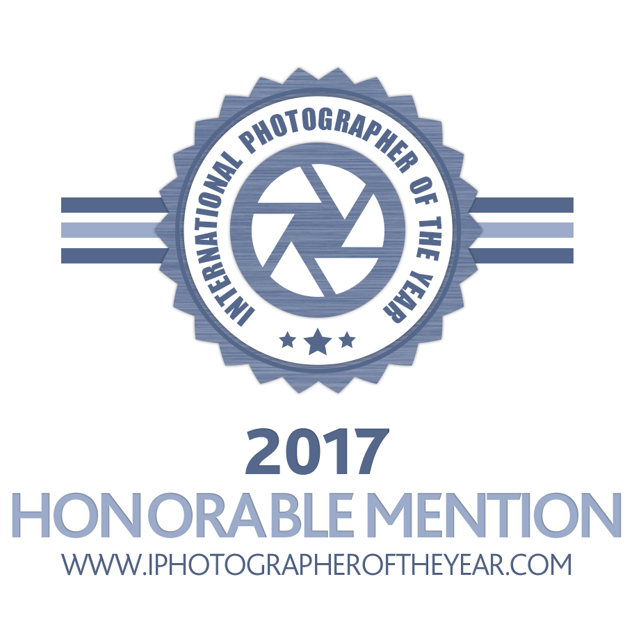 Feb, 2018 - My Subject/Object Series received an Honorable Mention in the Fine Art category of the International Photographer of the Year competition, 2017.