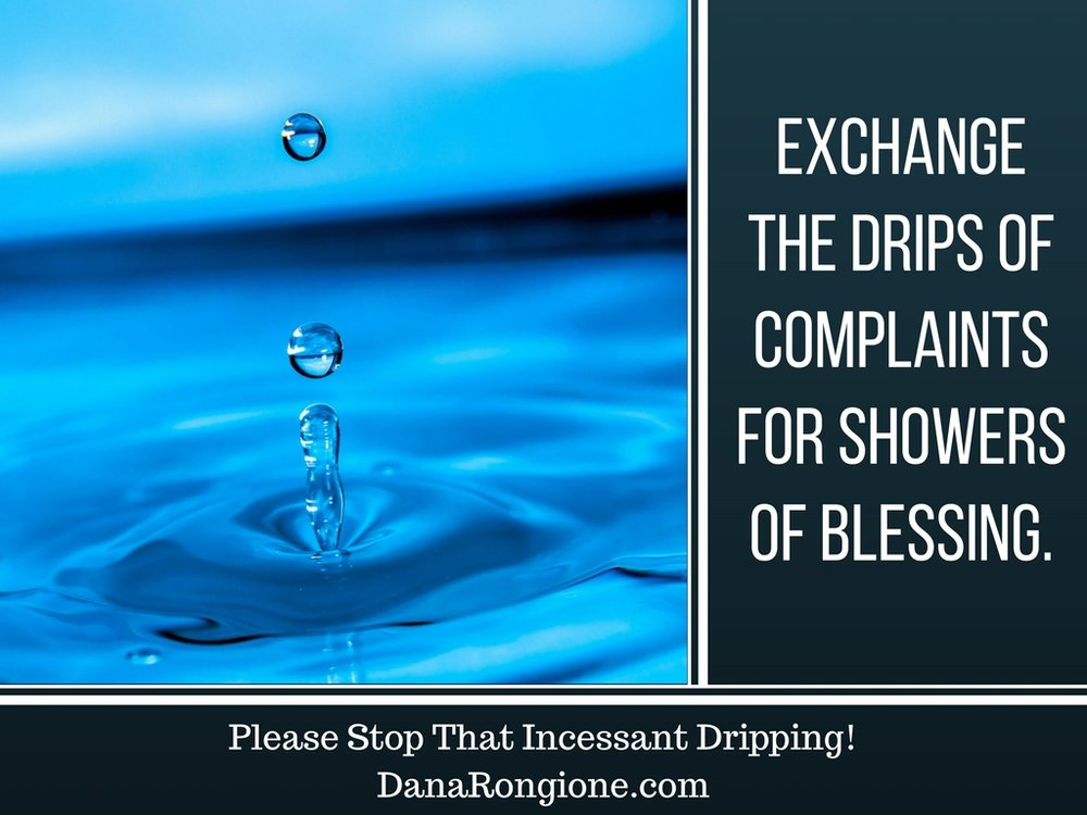 Please Stop That Incessant Dripping!DanaRongione.com-3.jpg