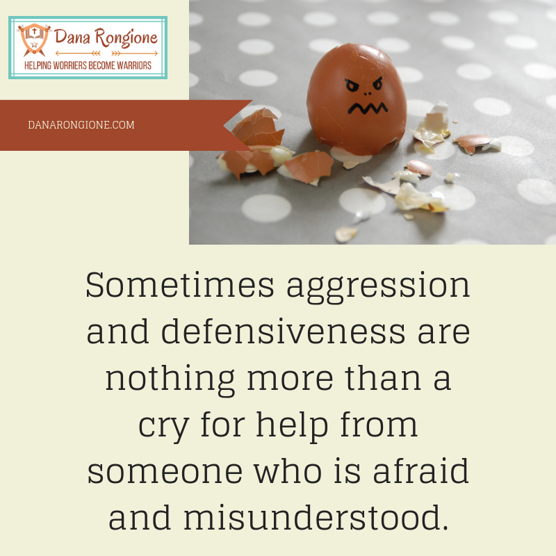 Sometimes aggressionand defensiveness arenothing more than a cry for help from someone who is afraid and misunderstood..png