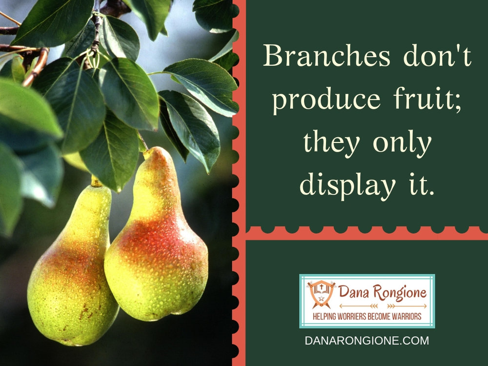 Branches don't produce fruit;they only display it..jpg