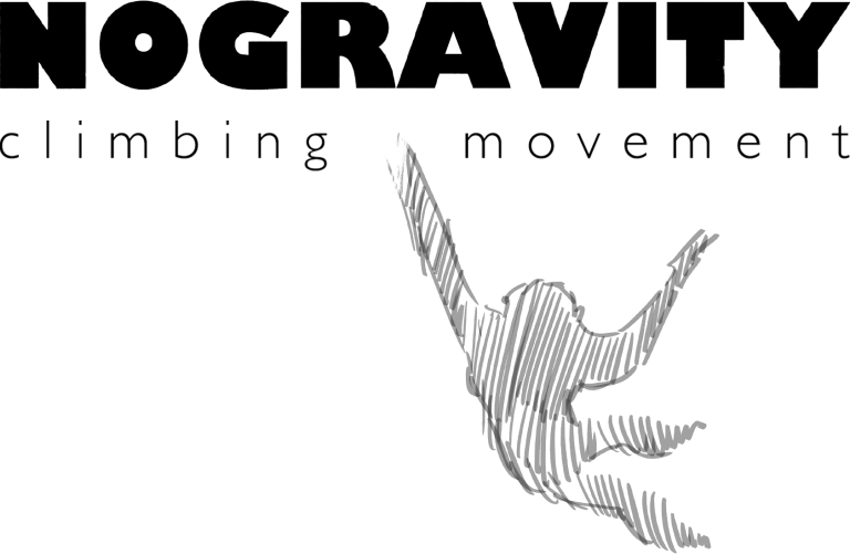 NoGravity-LOGO_black-1-768x501.png