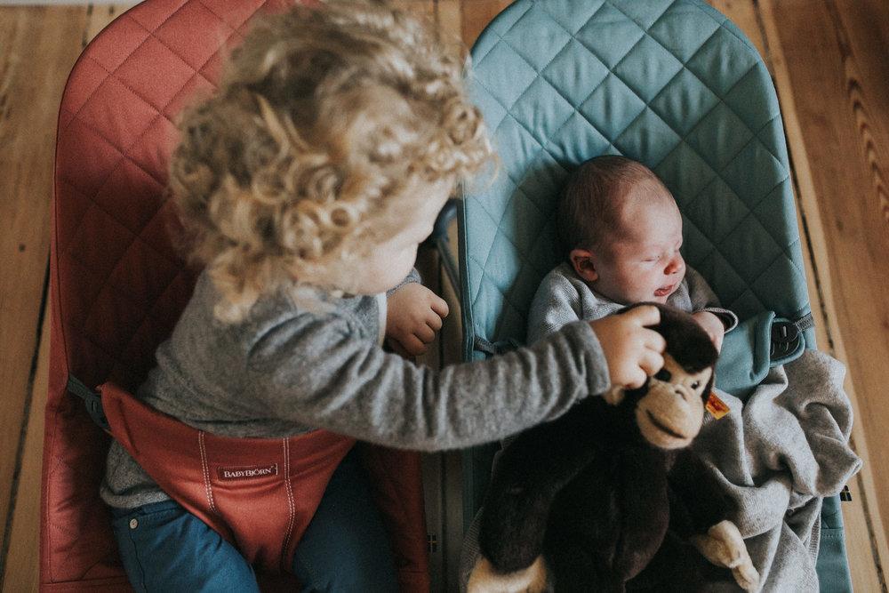 BabyBjörn Bliss
