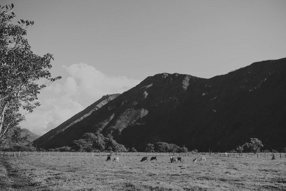 paisaje de oxapampa en la boda rancho ruffner