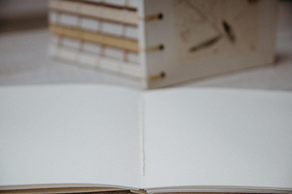 album fotos comunion logroño larioja fotografo profesional reportaje natural ecologico infantil -9.jpg
