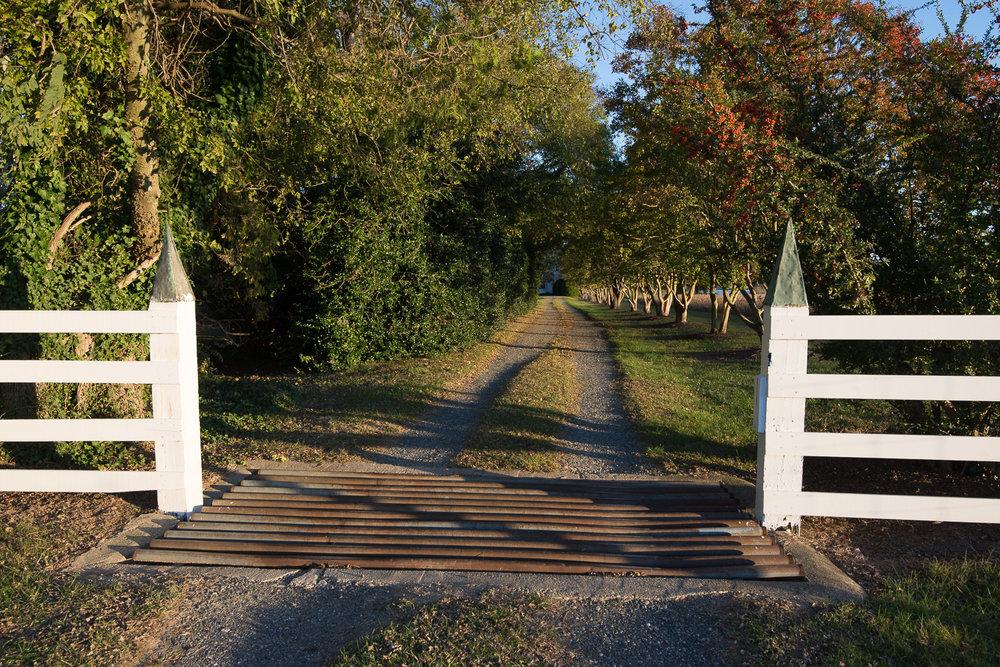 2013-10-26-MP Farm-0422.jpg