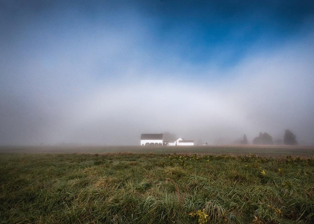 2011-11-07-MP Farm-5064 - V137.jpg