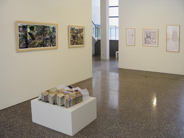 "Exhibition view, Jan Estep,  Wittgenstein Project,  ""McKnight Visual Artists 2006-2007,"" MCAD Gallery, Minneapolis, July to August 2007."