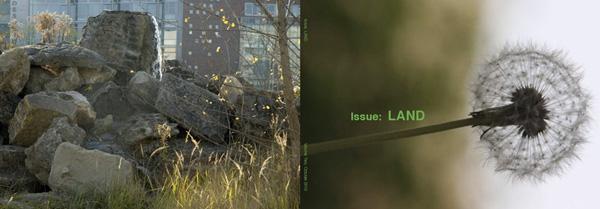 IssueLANDcover2.jpg