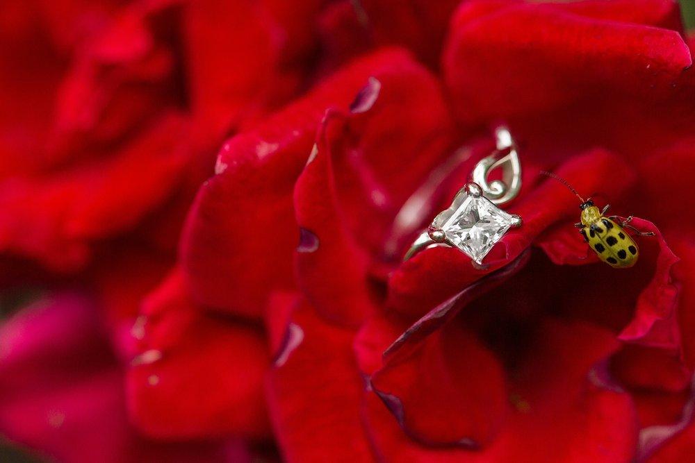 Michelle_Joy_Photography_Columbus_Engagement_Inniswood_Metro_Gardens21.jpg