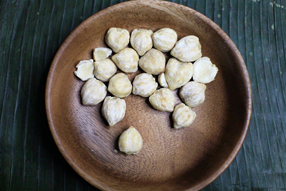CANDLE NUT/KEMIRI