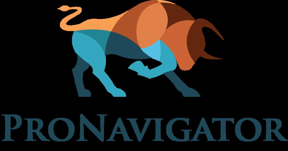 ProNavigator_no_background.png