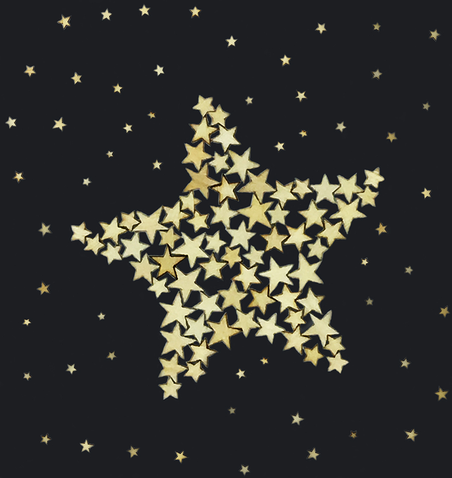 star_of_stars_black-sm.jpg