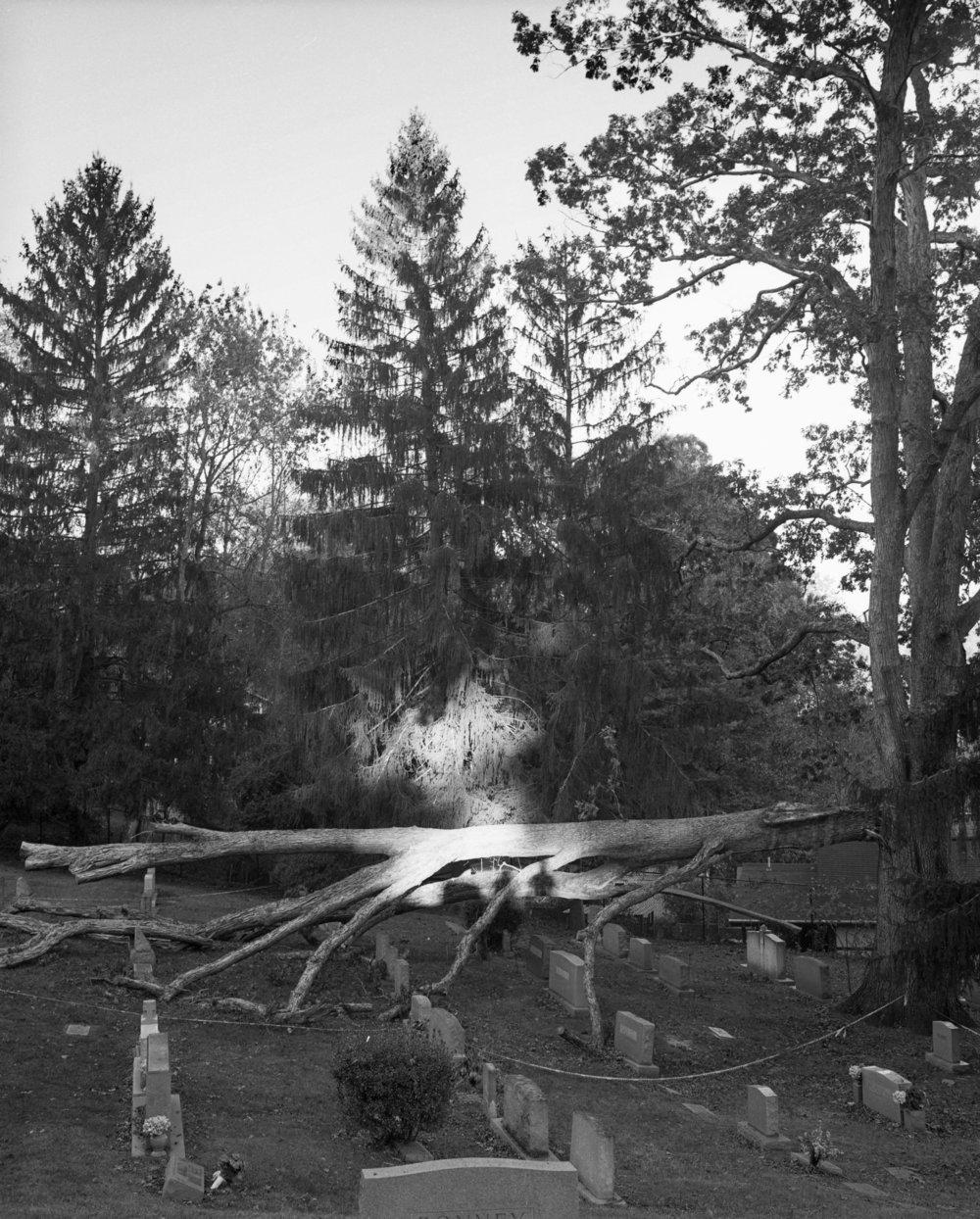 Cemetery redo processed.jpg