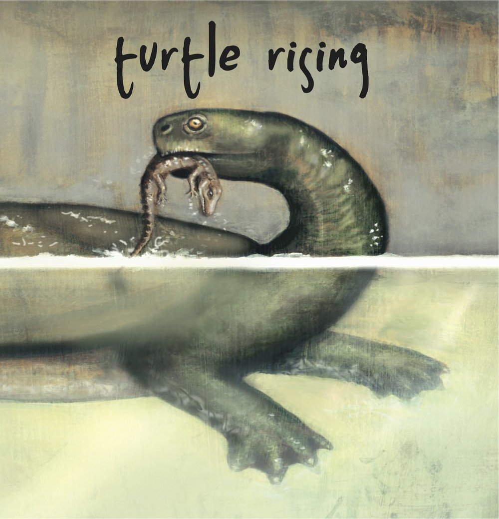 turtle rising - st.jpg