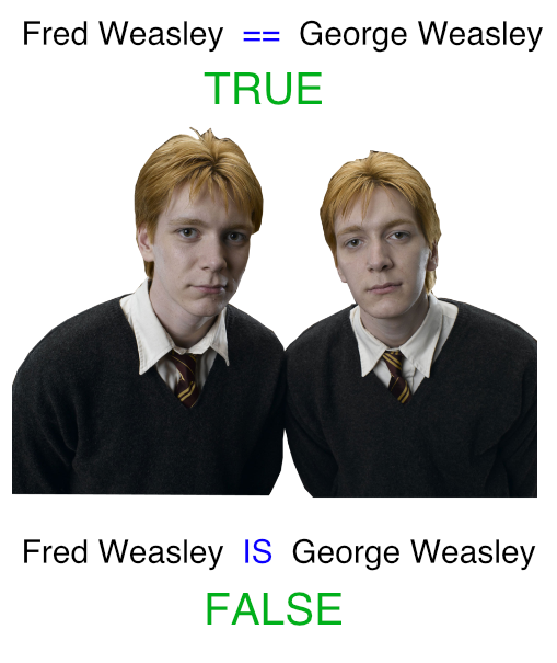 fred_george_weasley_python.png