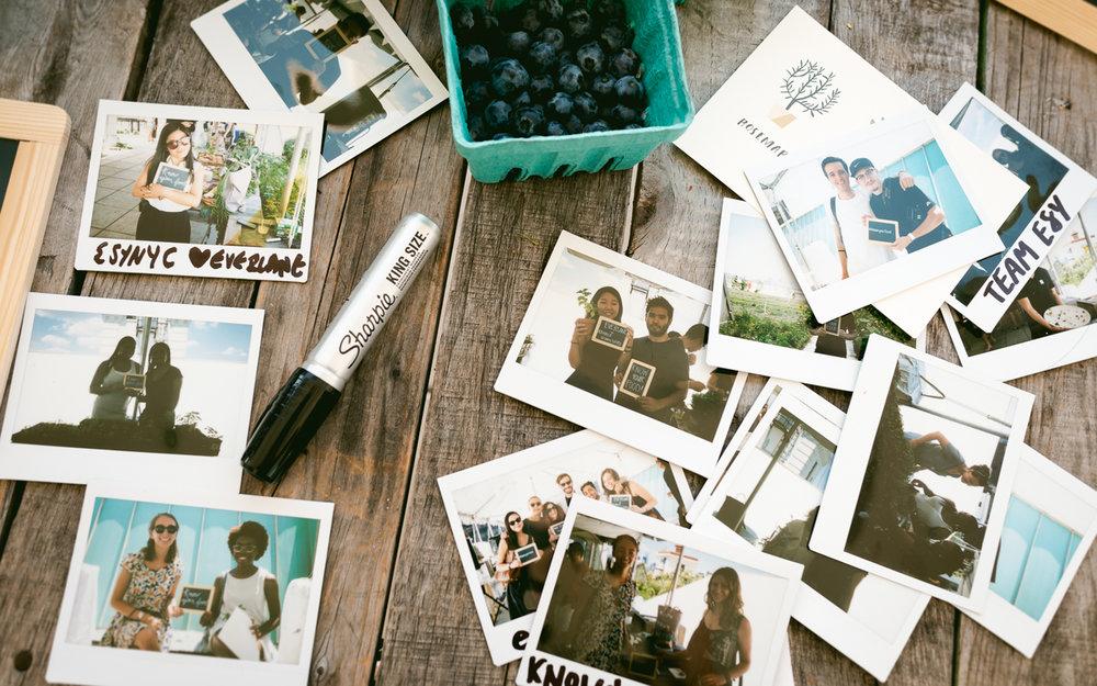 StephanieTam_KnowYourFood_Polaroids.jpg