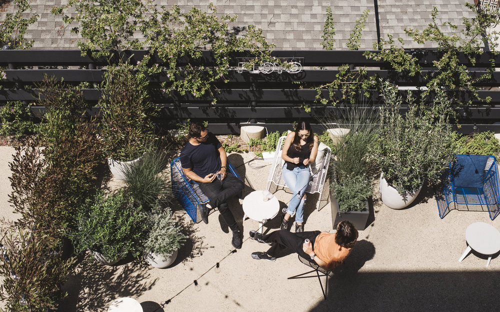 StephanieTam_Floyd-Housewarming_Backyard.jpg