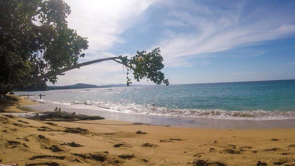 Playa Grande - Manzanillo